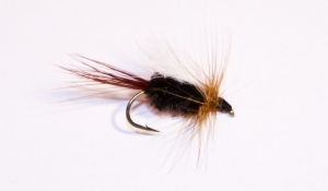 Pass Lake Trout Fly\