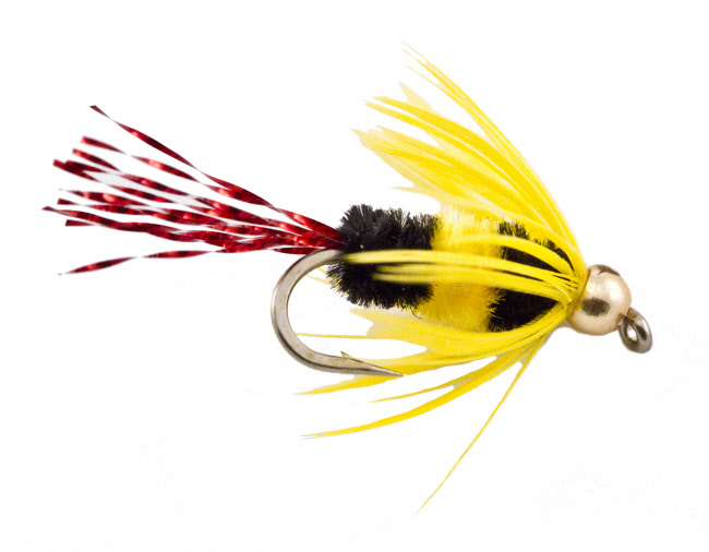 Bluegill bee the fly fishers fly shop milwaukee wisconsin for Fly fishing for bluegill