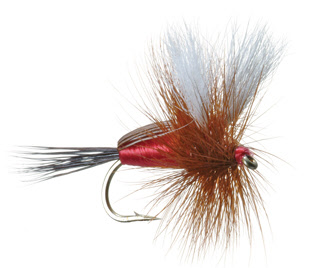 Humpy Dry Fly Trout