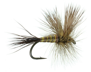 Brown Drake Lawson Dry Fly for Trout