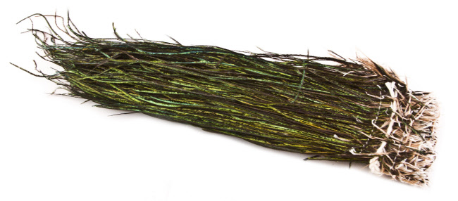 "Peacock Herl Strung 5""-7"""