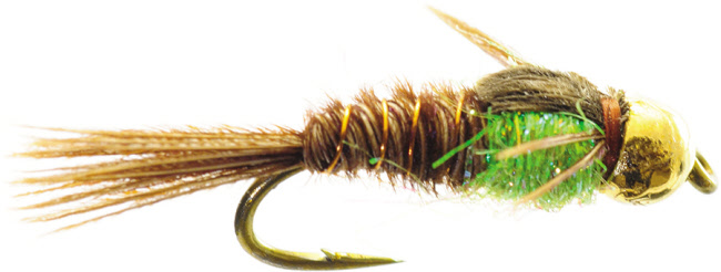 Hot Belly Pheasant Tail Nymph for Trout