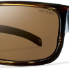 Smith Optics - Collective Polarized Sunglasses - Brown Stripe/Polar Brown
