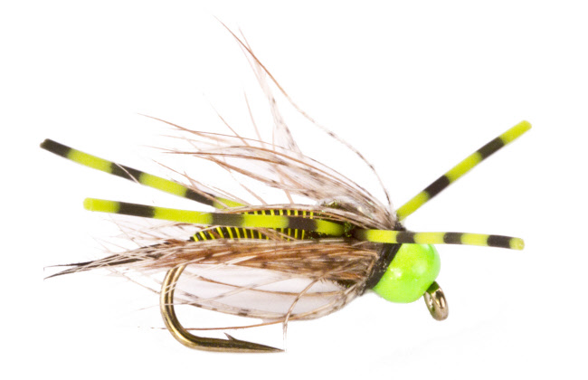 Rubber Leg Hot Head Trout Fly