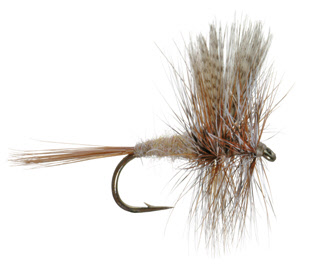 March Brown Dry Fly for Trout