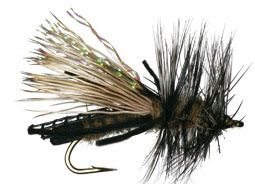 Skwala Trout Dry Fly