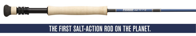 Sage SALT Series Fly Rod - 890-4 (8wt. 9