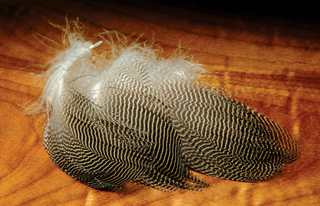 Hareline Gadwall Feathers