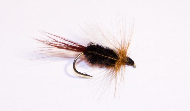 Dry trout flies for sale online best trout flies for for Fly fishing flies for sale
