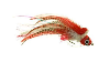 Umpqua Pike Fly Red