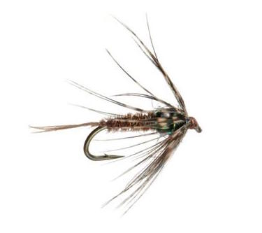 Tungsten Soft Hackle Pheasant Tail
