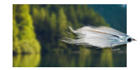 Sale Priced Fly Fishing Flies Discounted