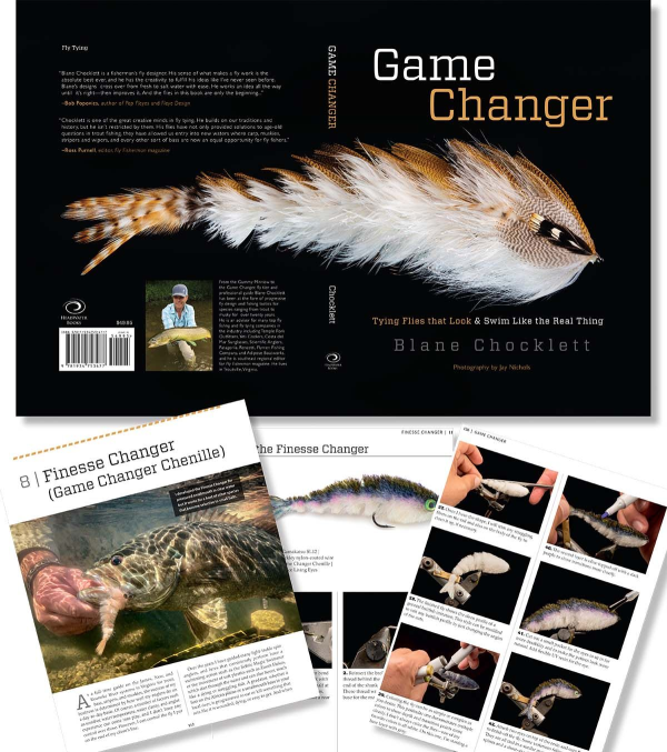 Game Changer Book by Blane Chocklet