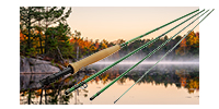 Best Fly Rods for Beginners
