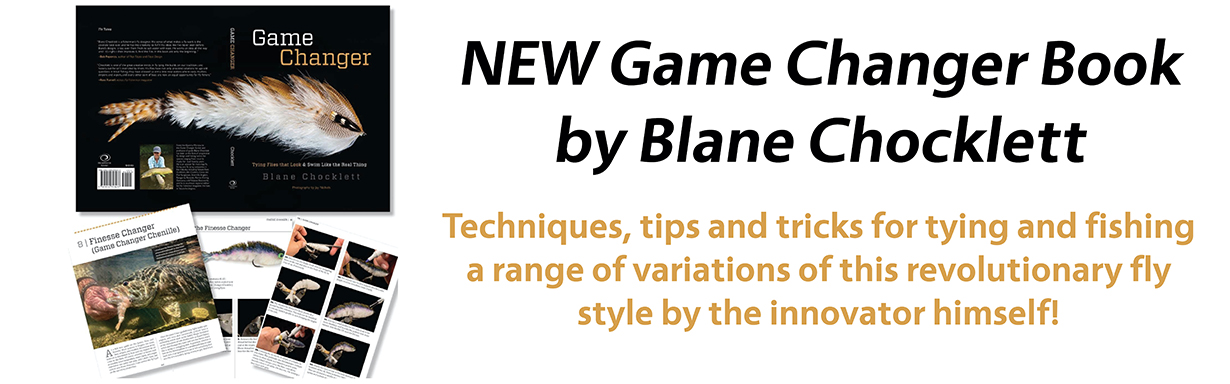 Buy Game Changer Book by Blane Chocklett